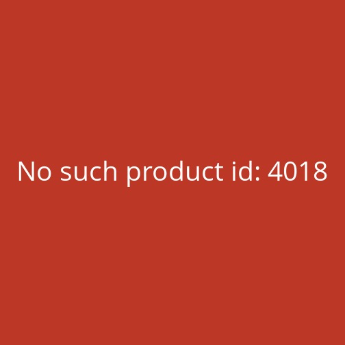 BioTech USA Oat and Fruits (70g)